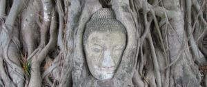 Ayutthaya-kongeriget